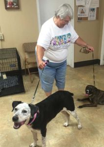 Ms. Dot and her new brother and mom!  Happy life Ms. Dot!